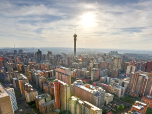 South Africa 11