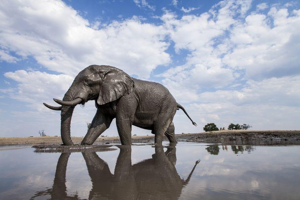 Botswana - 4x4 Selbstfahrer -Abenteuer 7