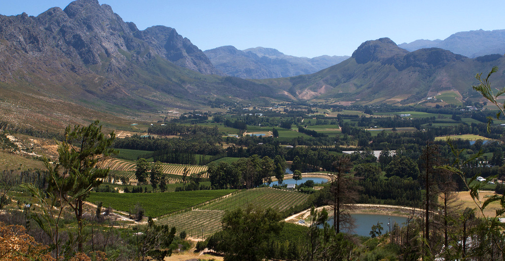 Wine Farms in and around Cape Town 3