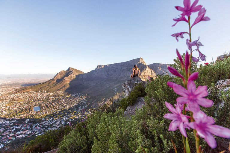 Area of the week: Tamboerskloof, Cape Town 9