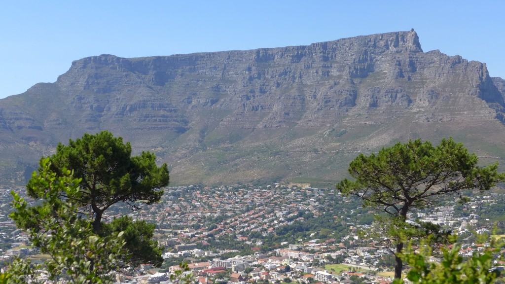 Heading to South Africa? Why You Should Employ a Tour Guide 7