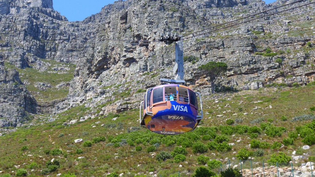 Heading to South Africa? Why You Should Employ a Tour Guide 3