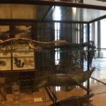 Eröffnung des belgischen Afrika-Museums 8