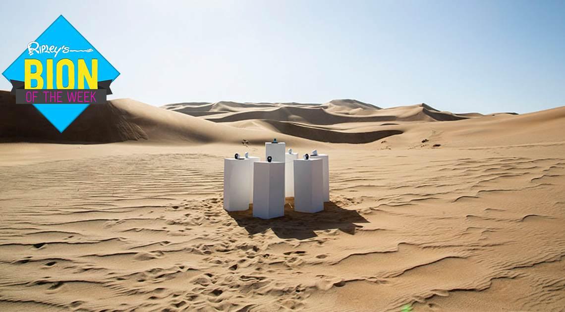 """Toto's """"Africa"""" spielt auf Schleife in Afrika mit solarbetriebenen Lautsprechern 6"""