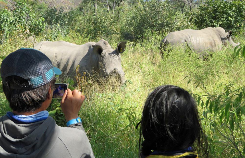38 Remarkable Wildlife Encounters in Africa 45
