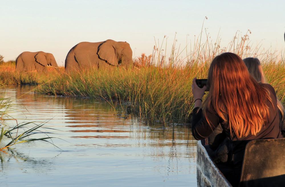 38 Remarkable Wildlife Encounters in Africa 13
