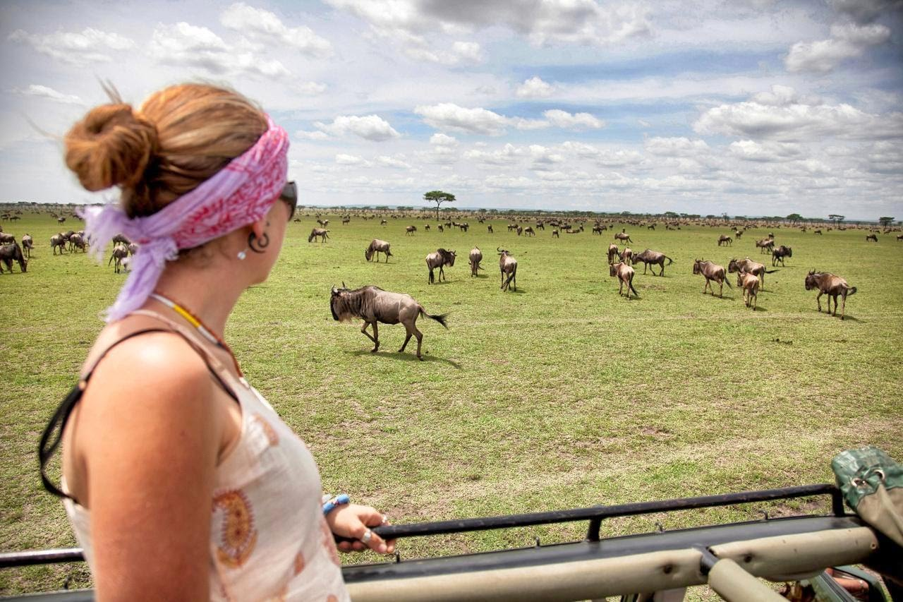 Tanzania - The Great Migration 5